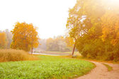 Autumn landscape # 4 — Photo