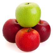 3 červené a 1 zelená jablka — Stock fotografie