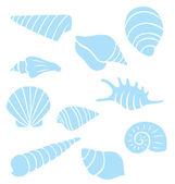 Sea Shells Collection — Stock Vector