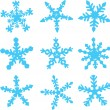 Varieties of Snowflakes — Stock Vector