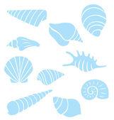 Sea Shell Collection — Stock Vector