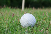 Golf ball, golf — Stock Photo