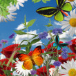 A beautiful garden illustration, flowers, butterflies — ストック写真