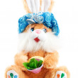 Rabbit — Stock Photo #4590416