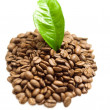 Stock Photo: Coffee grains and coffee leaf