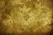 Absract retro gold flourish classical template — Stock Photo