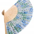 China hand fan — Stock Photo #5029780