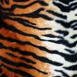 Stock Photo: Tiger fur
