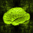 Digital brain - Stock Photo