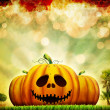 Autumn Halloween pumpkins illustration - Stock Photo