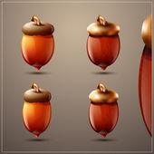 Glossy autumn acorn icon set — Stock Vector