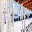 Icicles close-up — Stock Photo