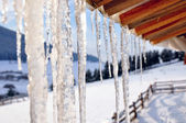 Icicles close-up — Stockfoto