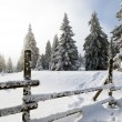 Stock Photo: Fence in winter landscape