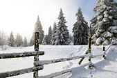 Fence in winter landscape — Stock Photo