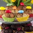 Muffins decorated with easter eggs — Stock Photo
