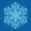 Single detailed snowflake on light blue background — Stock Vector