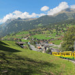 Stock Photo: Cog-wheel train to Jungfraujoch Switzerland