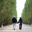 Couple walking together — Stock Photo
