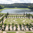 Stock Photo: Decorative gardens with Orange trees Versailles