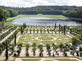 Decorative gardens with Orange trees Versailles — Stock Photo