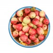 Apples in bowl — Stock Photo #4104117