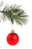 Red christmas ball hanging on pine tree branch — Stock Photo