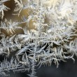 Frost pattern on a winter window — Stock Photo