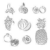 Vector Fruits Set — Stock Vector