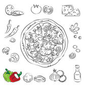 Vector Sketch Collection of Pizza and ingredient — Stock Vector