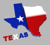 Texas, map with flag, isolated on grey, with clipping path — Stock Photo
