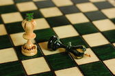 Kings on chessboard — Stock Photo