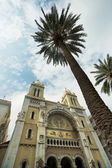 Tunisia: Cathedral of St. Vincent de Paul, Tunis — Stock Photo