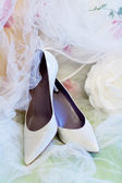 Wedding Shoes — 图库照片