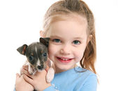Cute girl holding a puppy — Stock Photo