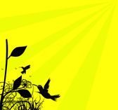 Plants And Birds Silhouettes — Stock Photo
