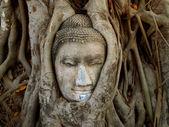 Buddhist idol — Stock Photo
