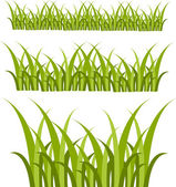 Design of grass — Stock Photo