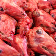 Stock Photo: Skinned Sheep Heads