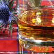 Stock Photo: Scotch Whiskey and Thistle