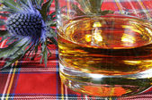 Scotch Whiskey and Thistle — Stock Photo