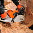 Stock Photo: Logger with chainsaw.