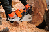Logger with chainsaw. — Stock Photo