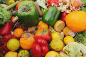 Rotten fruit and vegetables — Stock Photo