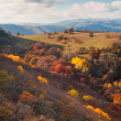 Vast Autumn Colors in Georgia — Stock Photo