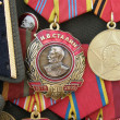 Military Stalin-Medal — Stock Photo