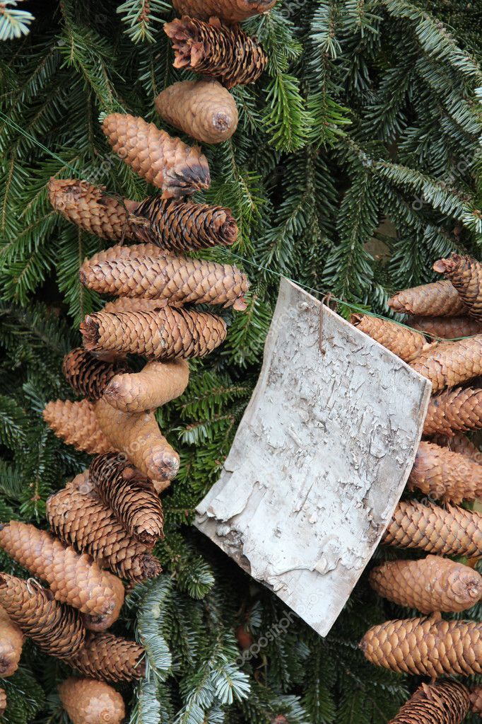 Firtree decorated with many cones — Stock Photo #4920976