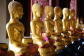 在泰国的寺庙佛像. — 图库照片