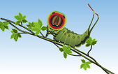 Caterpillar - Vector — Stock Vector