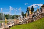 Lower park of the Peterhof — Stock Photo